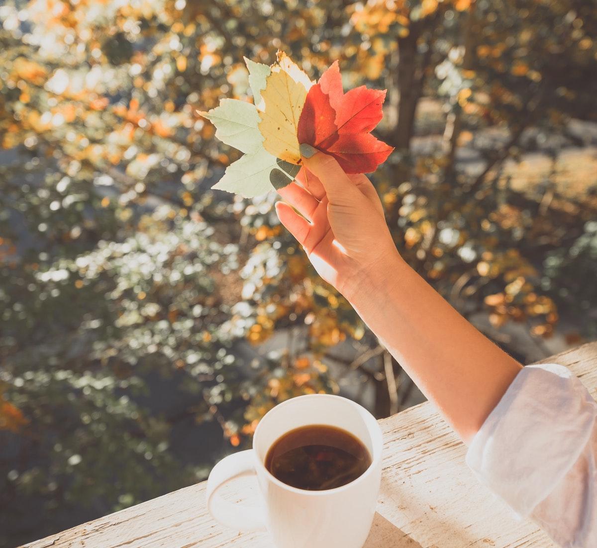 13 conseils pour affronter la dépression saisonnière