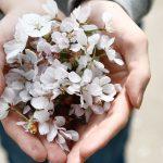 Chamane urbaine : Vivre le moment présent et vivre la gratitude